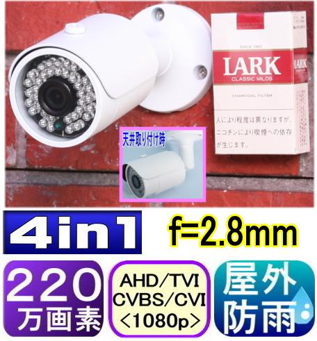 51501,屋外用防犯カメラ 固定焦点タイプ